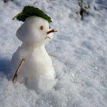 В Смоленской области объявлено штормовое предупреждение