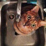 У кого из смолян не будет воды 15 февраля