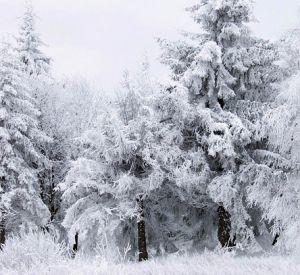 Прогноз погоды на четверг, 14 февраля