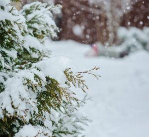 Прогноз погоды на пятницу, 8 февраля