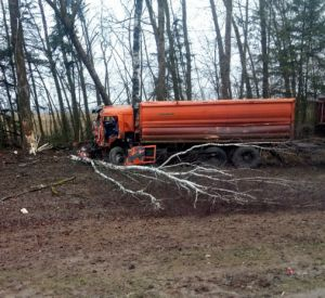 Появились подробности жесткого ДТП с лесовозом (видео)