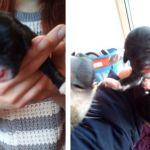 В общежитие неизвестные подбросили новорождённых щенков