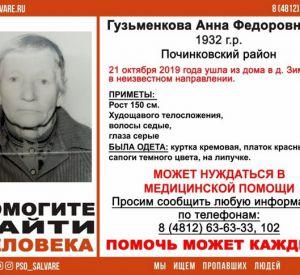 В Смоленской области продолжаются поиски 87-летней пенсионерки