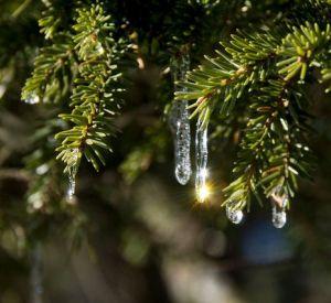 В Смоленске зафиксирован новый температурный рекорд