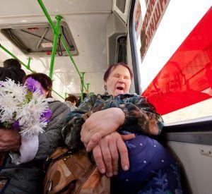 Как будут ходить дачные автобусы