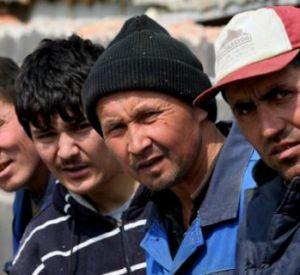 В Смоленске таджик «крышевал» нелегалов