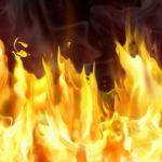 В Смоленской области огонь уничтожил 300 рулонов сена