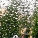 Прогноз погоды на пятницу, 25 августа