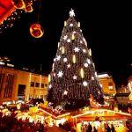 Нужна ли Смоленску елка за два миллиона рублей?