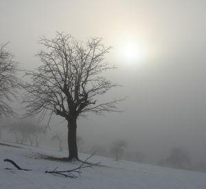 Прогноз погоды на субботу, 2 декабря