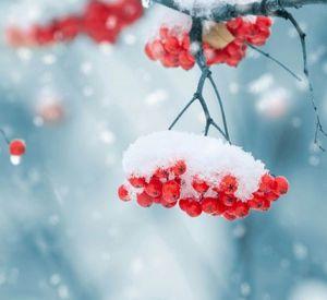 Прогноз погоды на среду, 27 декабря