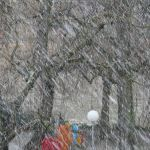 Прогноз погоды на воскресенье, 31 декабря