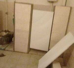 Смоляне негодуют от состояния общественного туалета