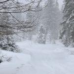 Прогноз погоды на пятницу, 19 января
