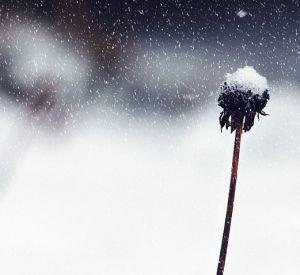 Прогноз погоды на пятницу, 2 февраля