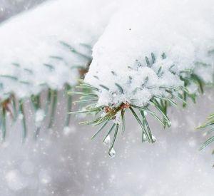 Прогноз погоды на среду, 7 февраля