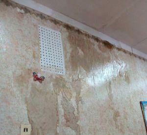 После «качественного» ремонта крыши затопило коридоры школы (фото)