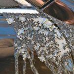 В Смоленске неизвестные облили автомобиль кислотой