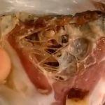 Ветслужба разыскала продавца червивого сала (видео)