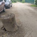 Открытый канализационный коллектор в Смоленске прикрыли пнем