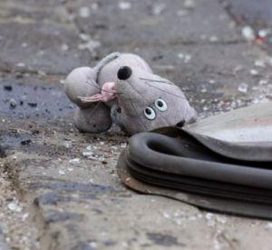 В микрорайоне Королевка автомобиль сбил ребенка
