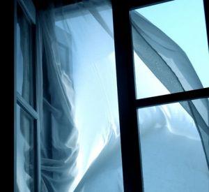 Живодер выкинул из окна пятого этажа маленького котенка
