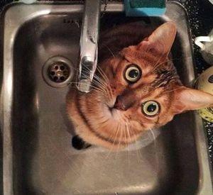 У кого из смолян отключили холодную воду