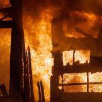 Огнеборцы смогли  спасти из горящей постройки кур