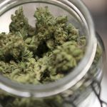 В багажнике наркоторговца нашли марихуану