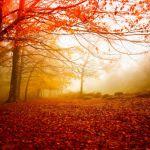 Прогноз погоды на вторник, 9 октября