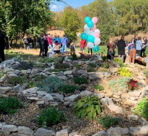 В областном центре создали «Сад добра»