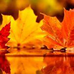Прогноз погоды на среду, 2 октября