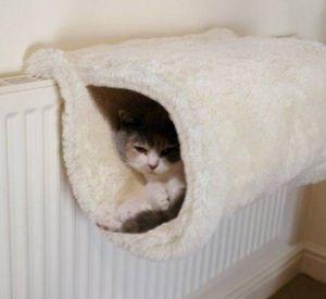 Жители Заднепровского района платят за отопление, которого нет