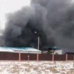 Под Смоленском загорелась кролиководческая ферма (видео)