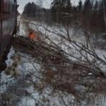В Сафонове пассажирский поезд сбил насмерть мужчину