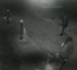 На камеру видеонаблюдения попали малолетние хулиганки