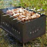 В Красном Бору запретят жарить шашлыки, но сохранят существующую застройку