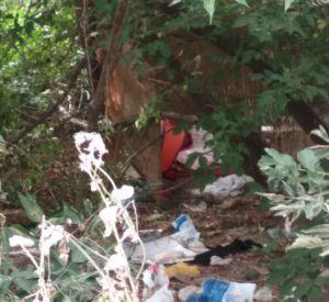 Смоляне пожаловались на бомжей, отравляющих им жизнь (фото)