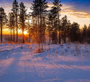 Прогноз погоды на пятницу, 11 января