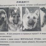В Смоленске неизвестные догхантеры убивают домашних собак