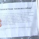 Жители Заднепровского района разыскивают догхантеров, которые убивают их собак (видео)