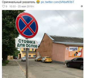 Губернатор Смоленской области нашел стоянку для ослов