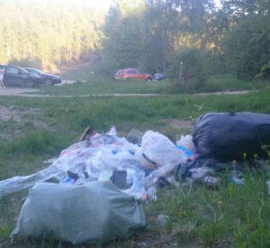 Реадовское озеро превращается в свалку мусора