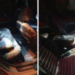 Фото: Неизвестные высыпали муку в салон машины