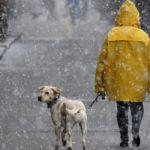 Прогноз погоды на субботу, 1 февраля