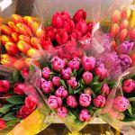 Где в Смоленске можно будет купить цветы к 8 марта