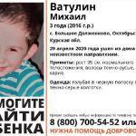 Завершились поиски трехлетнего мальчика с участием смоленских волонтёров