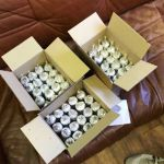 Смоленский студент пытался стащить три коробки мороженого