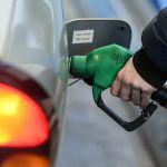 В России цены на бензин защитили от снижения