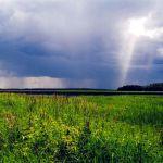 Прогноз погоды на 17 августа, четверг